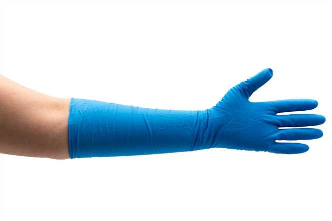 careline pflegeshop nitril handschuhe blau l nge 400. Black Bedroom Furniture Sets. Home Design Ideas